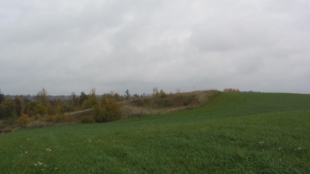 Vaade mälestisele reg nr 13675 läänest. Foto: Karin Vimberg, 16.10.2012.