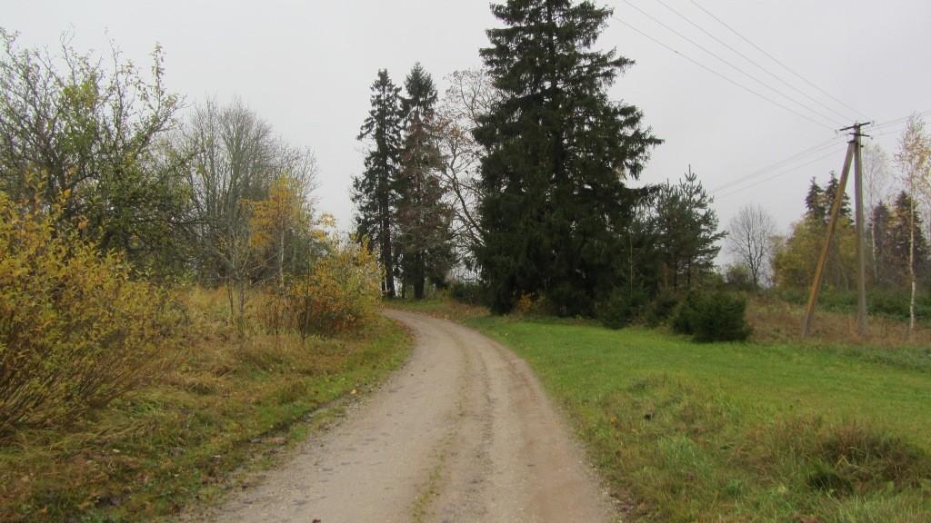 Vaade Naelavere asulakohale põhjast. Foto: Karin Vimberg, 17.10.2012.