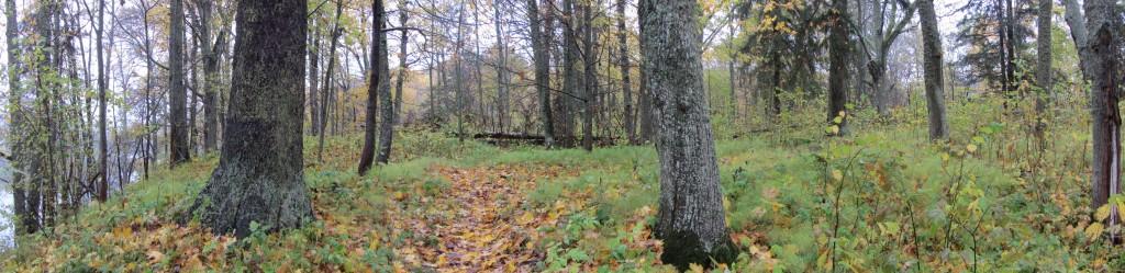 Vaade Alatskivi linnuse platooalale. Foto: Karin Vimberg, 17.10.2012.