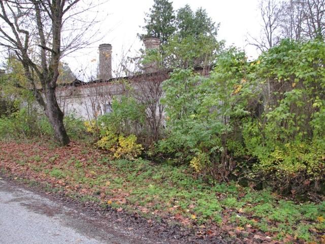 Aaspere mõisa kasvuhoone, vaade põhjast. Foto M.Abel 23.10.2012