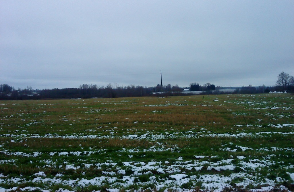 Vaade asulakoha reg nr 12850 alale põhjast. Foto: Karin Vimberg, 01.11.2012.