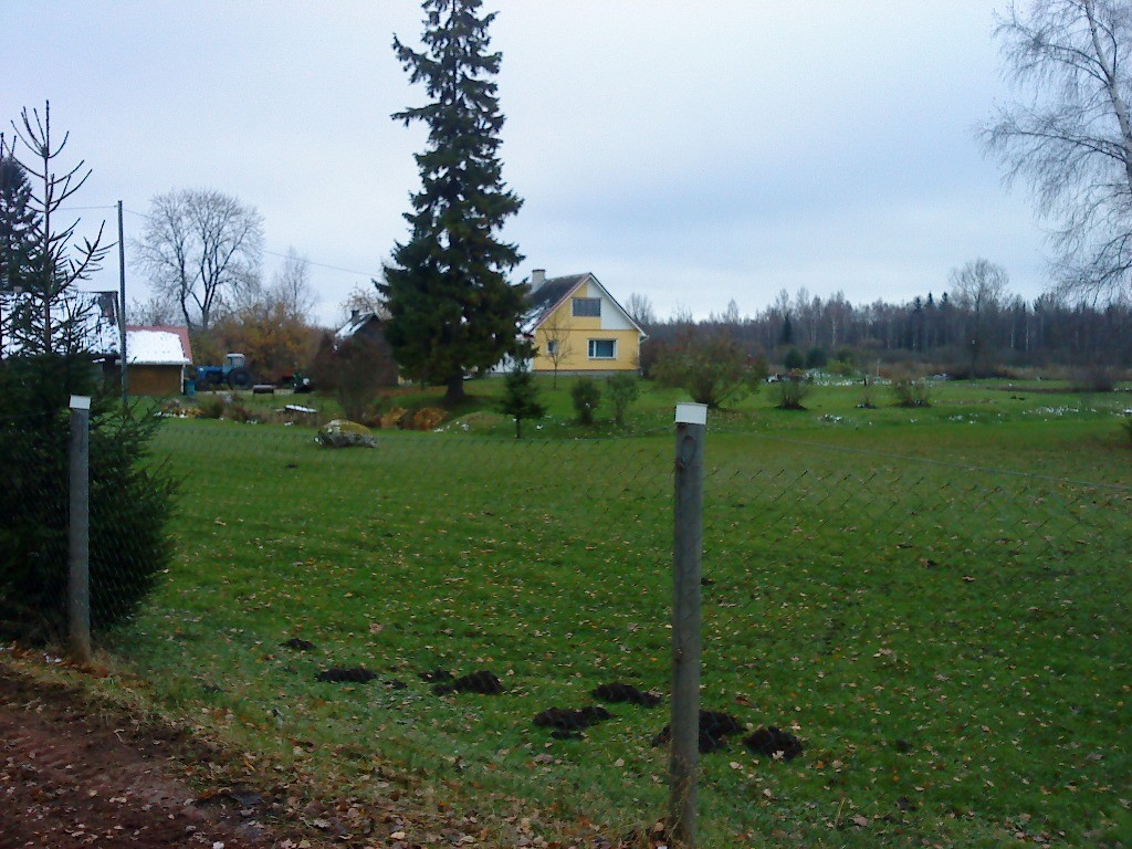 Vaade loodest asulakohale, mis jääb Saare talu hoovialale. Foto: Karin Vimberg, 01.11.2012.