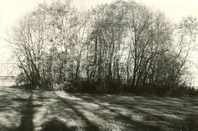 Kivikalme - edelast. Foto: E. Väljal, 05.10.1984.