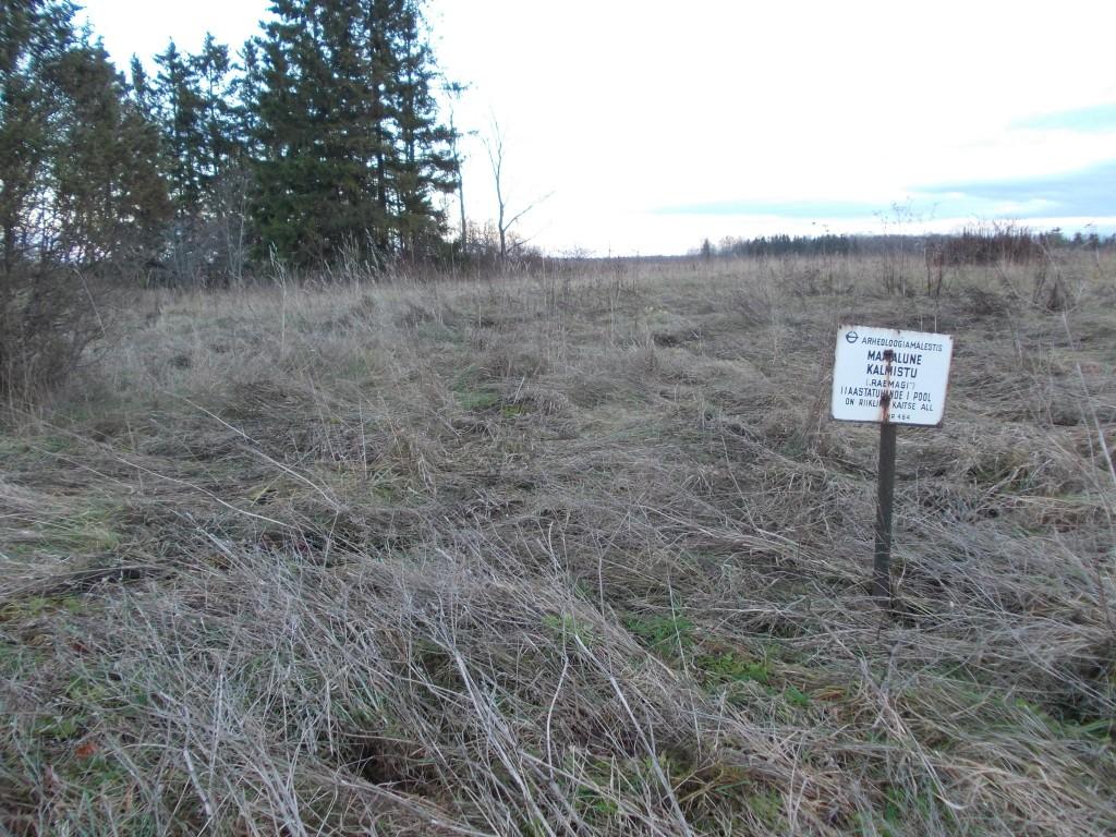 Vaade kalmistu lääneservast kagu poole. Foto: Ulla Kadakas, 08.11.2012.