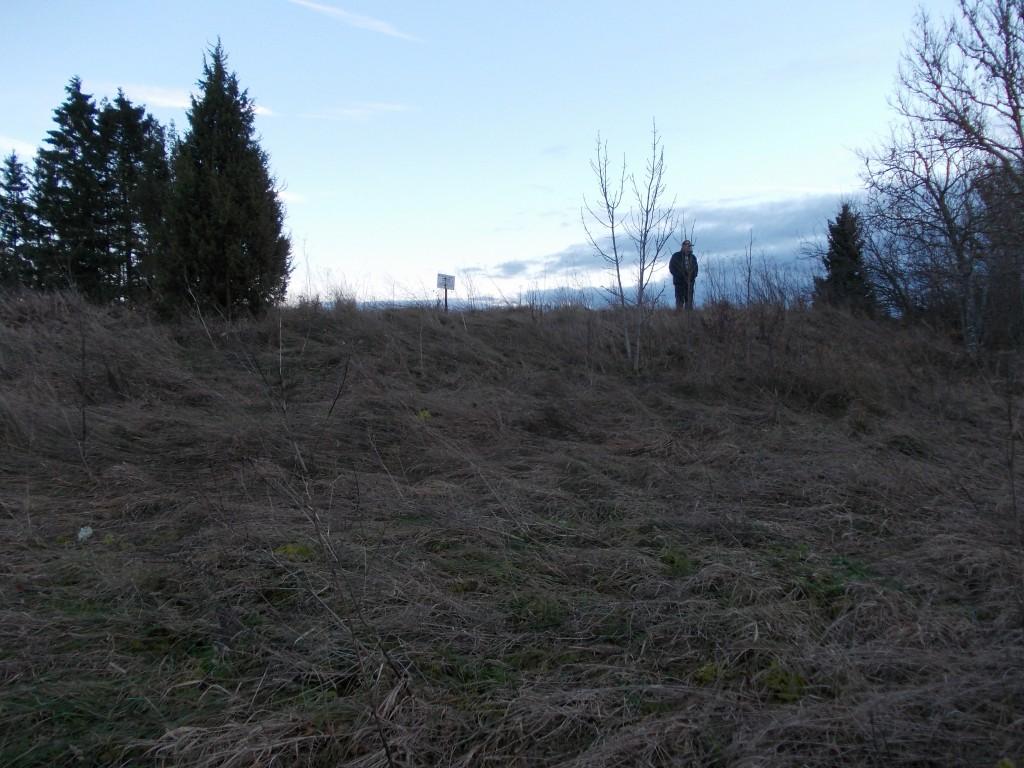 Vaade kalmistule läänest valli alt. Foto: Ulla Kadakas, 08.11.2012.