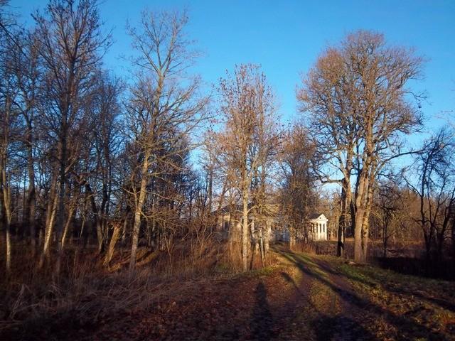 Hõreda mõisa park. K. Klandorf 13.11.2012