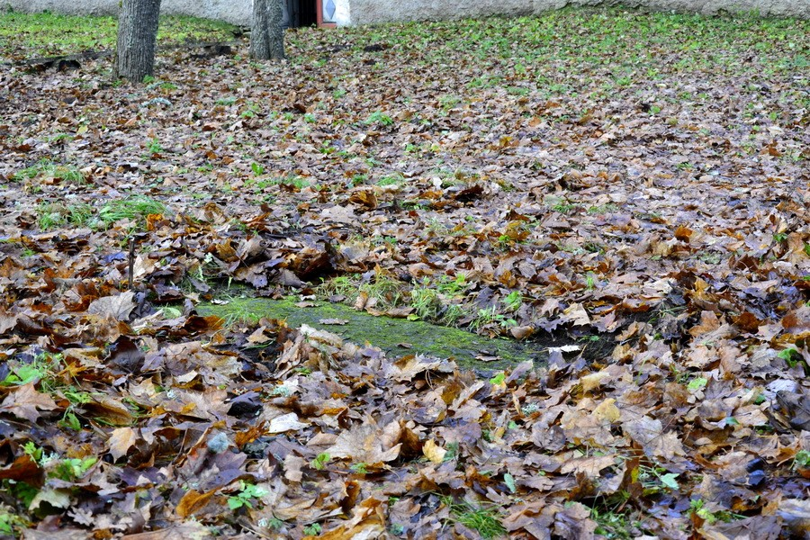 16211, hauaplaadi paiknemine pinnases, Ü.Jukk, 12.11.2012