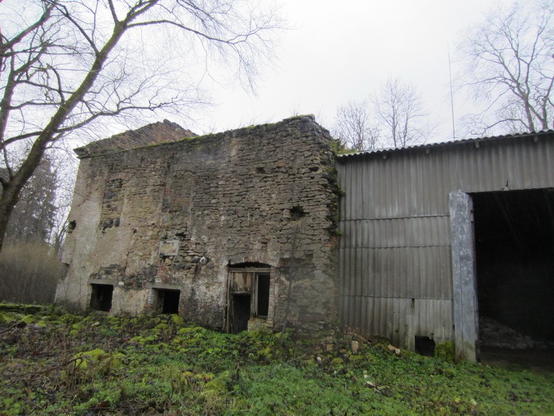 15874 Võhmuta mõisa viinavabriku varemed, vaade põhjaküljele 15.11.2012 Anne Kaldam