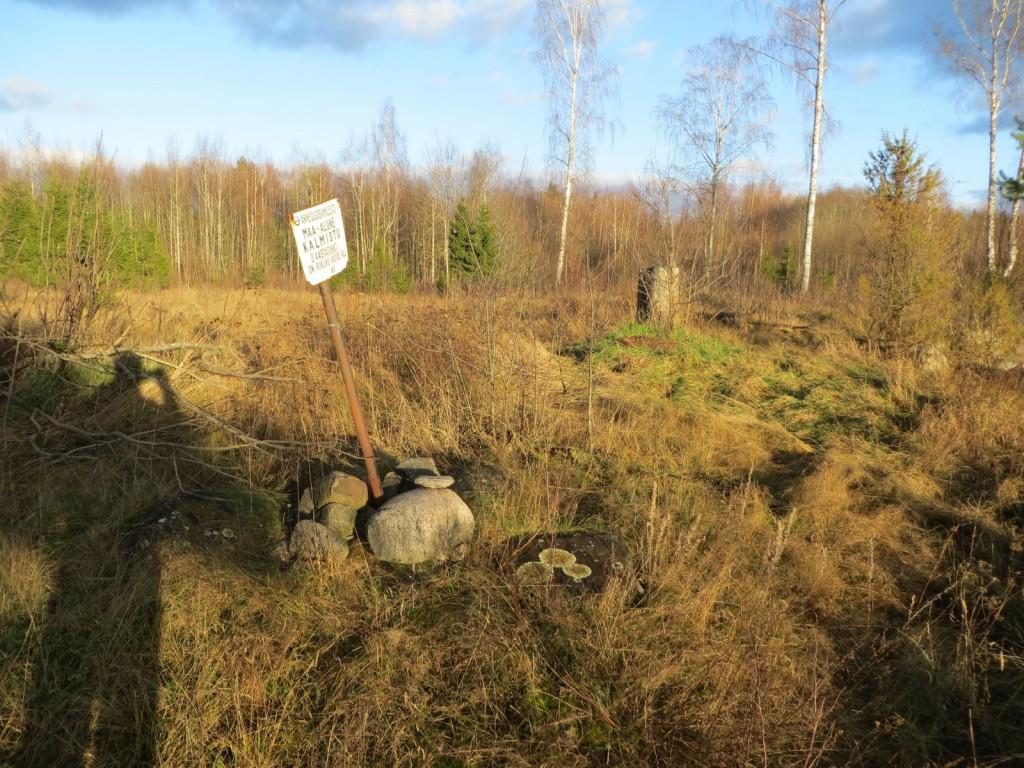 Kalmistu reg nr 13139. Foto: Ingmar Noorlaid, 13.11.2012.