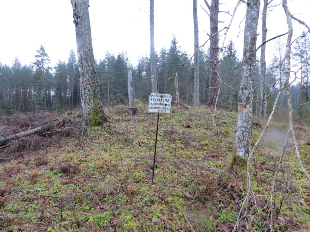 """Kivikalme """"Kirikuase"""" reg nr 13071. Foto: Ingmar Noorlaid, 15.11.2012."""