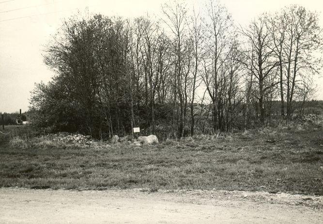 Kivikalme - edelast. Foto: E. Väljal, 08.05.1984.