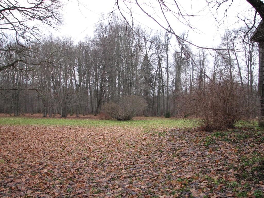 Arbavere mõisa park (15657), vaade lõunast. Foto: M.Abel, kuupäev 21.11.12