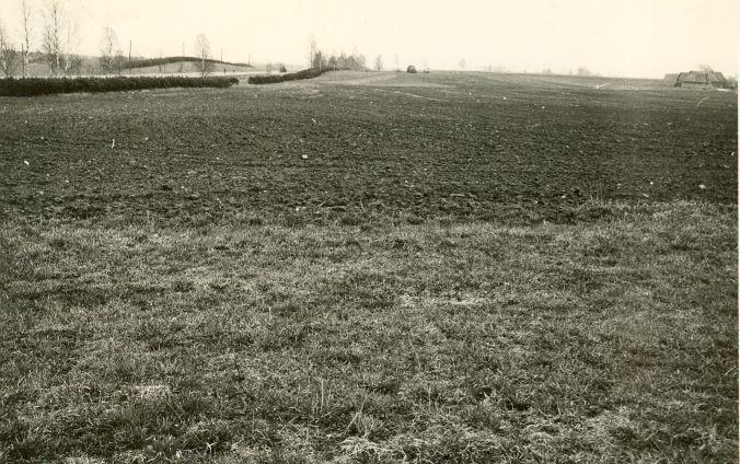 Maa-alune kalmistu - läänest. Foto: E. Väljal, 06.05.1985.
