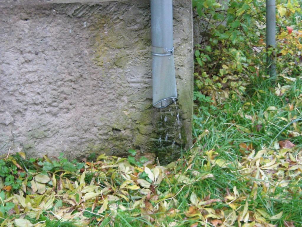 Vatla aida vihmaveetoru  Kalli Pets 05.10.2012