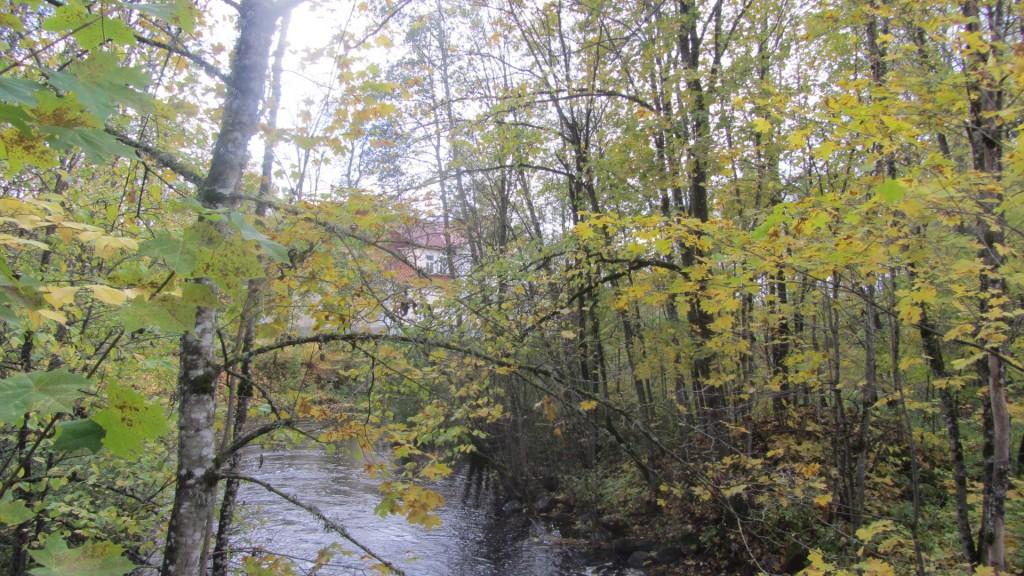 Vaade jõe poolt Nele Rent 16.10.2012