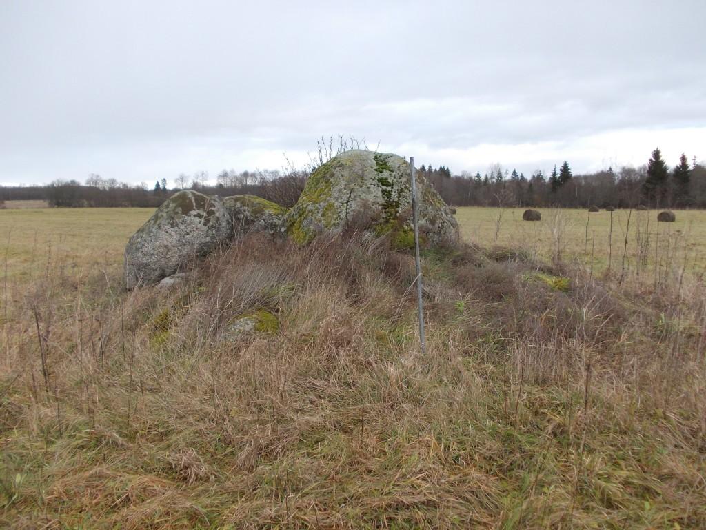 Vaade mälestistele (reg nr 18682-18683) lõunast. Foto: Ulla Kadakas, 8.11.2012