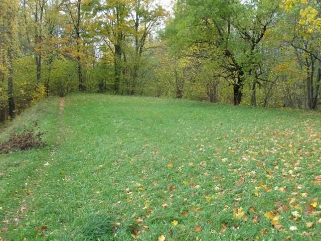 Linnus. Foto: Tõnis Taavet, 10.10.2012.