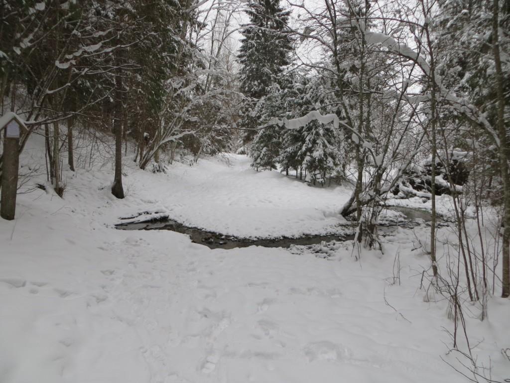 """Ohvriallikas """"Nuudaläte"""" reg nr 13117. Foto: Ingmar Noorlaid, 11.12.2012."""