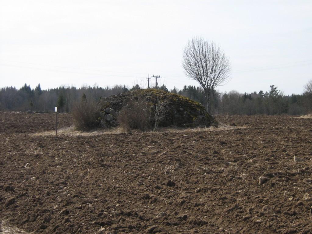 Näljakangur, reg. nr 22306. Vaade kirdest. Foto: M.Abel, kuupäev 23.04.2009