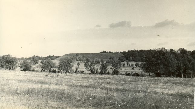 Vatla linnus - läänest. Foto: A. Sillasoo, 01.07.1973.