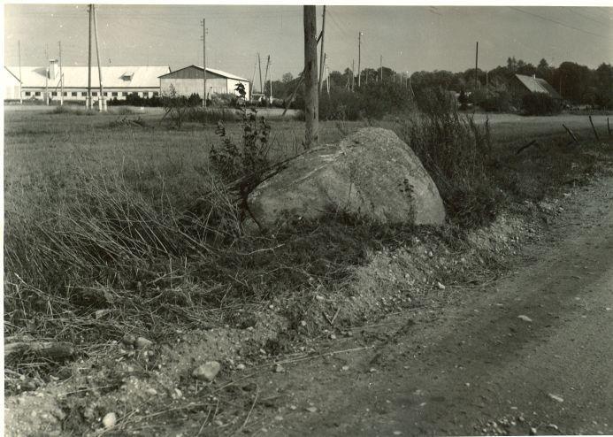 Kultusekivi. Foto: A. Sillasoo, 04.09.1974.
