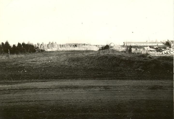 Maalinn (vaade ehitusega lõhutud linnusevallile). Foto: O. Kõll, 23.10.1979.