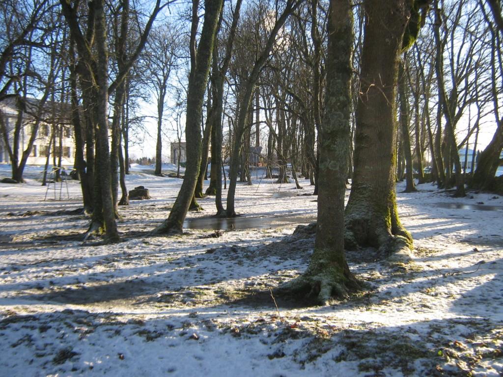 Muhu pastoraadi park. Foto: Rita Peirumaa, 1.02.2013
