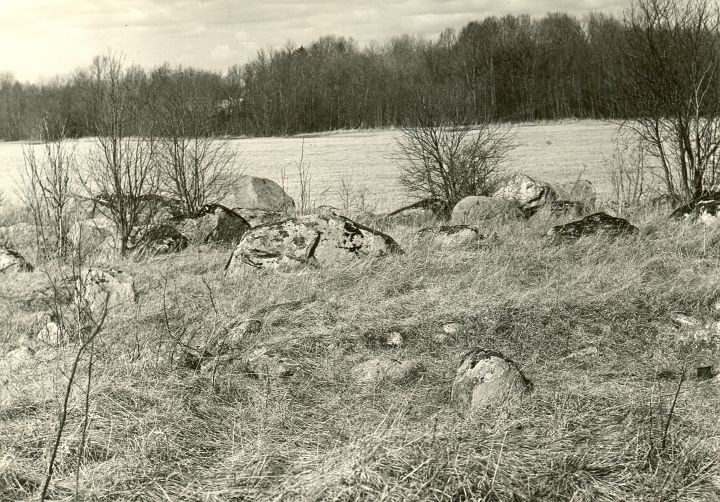 Kivikalme - lõunast. Foto: O. Multer, 29.04.1981.