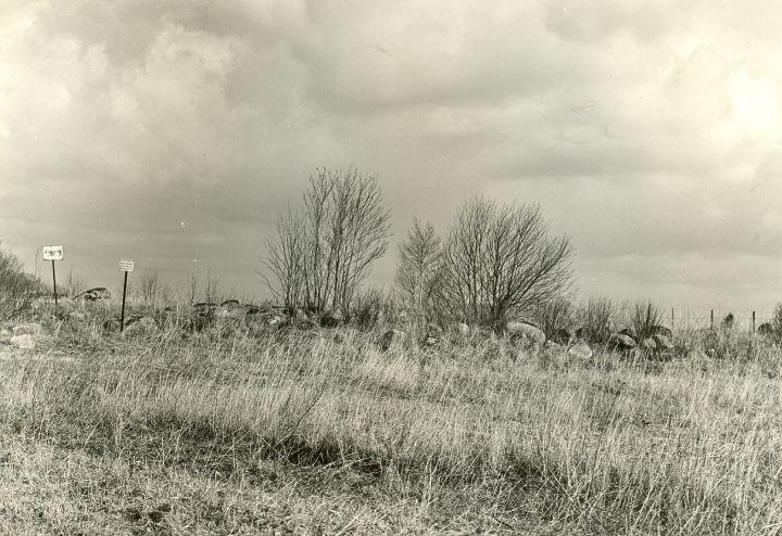 Kivikalme. Foto: O. Multer, 29.04.1981.
