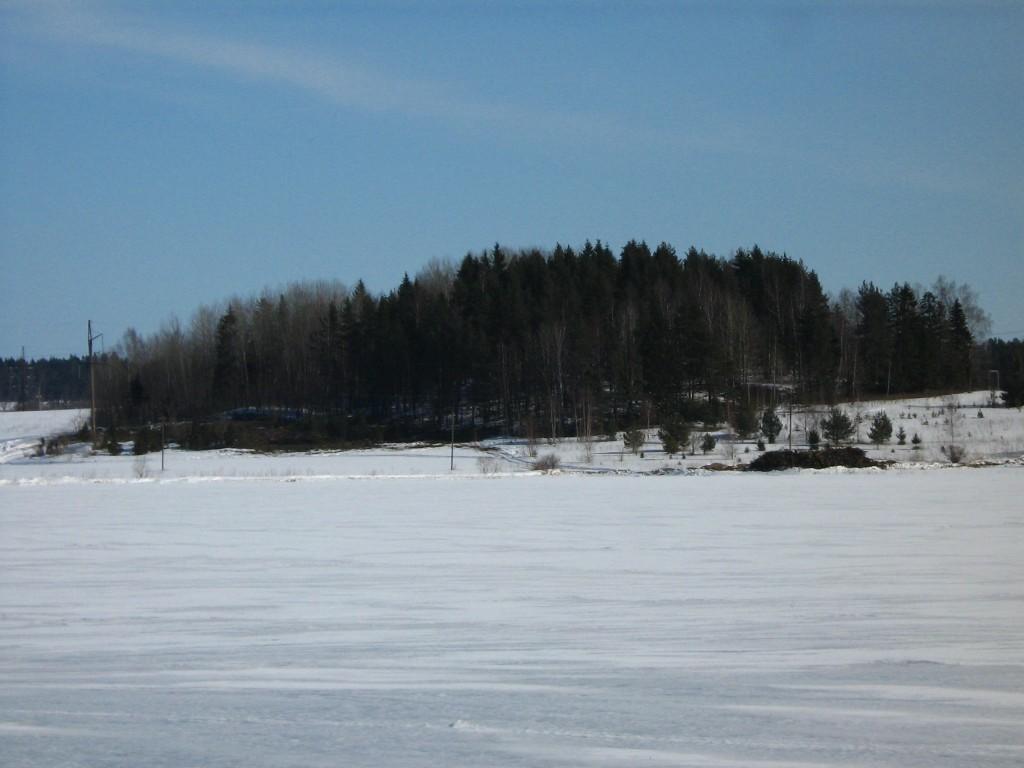 Tõrma Hiiemägi (reg nr 10356), vaade edelast. Foto: M. Abel, 04.04.2013.