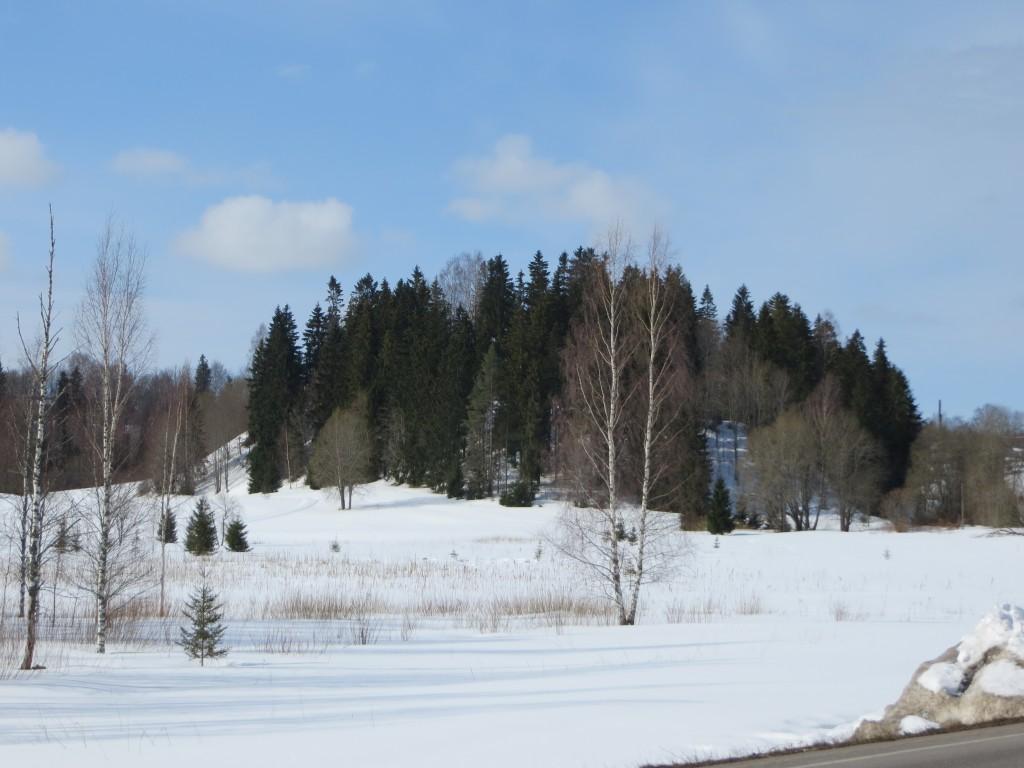Otepää linnamägi reg nr 13160. Foto: Ingmar Noorlaid, 10.04.2013.