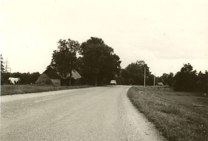 Asulakoht. Foto: O. Kõll, 07.09.1979.