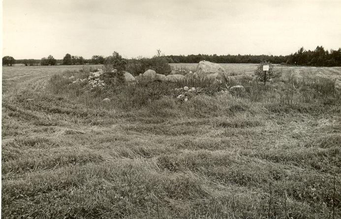 Kivikalme. Foto: O. Kõll, 07.09.1979.