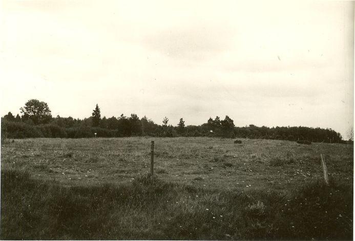 Kivikalmed. Foto: O. Kõll, 07.09.1979.