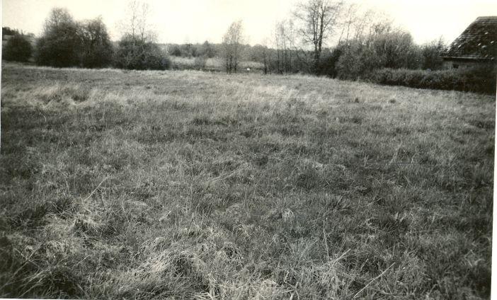 Asulakoht - kagust. Foto: E. Väljal, 20.05.1991.
