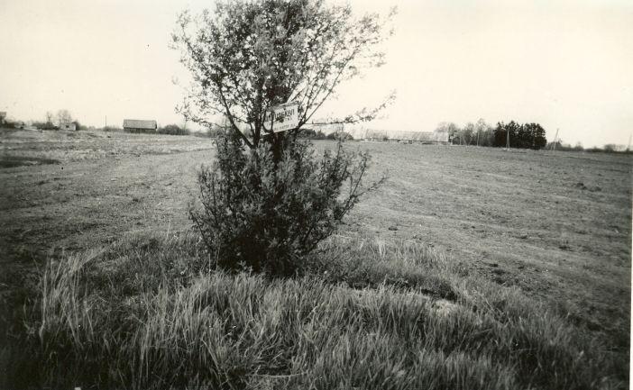 Kultusekivi - edelast. Foto: E. Väljal, 20.05.1991.