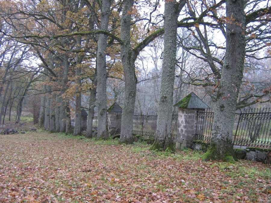 Piirdeaed põlispuudega  Autor R. Pau  Kuupäev  28.10.2007