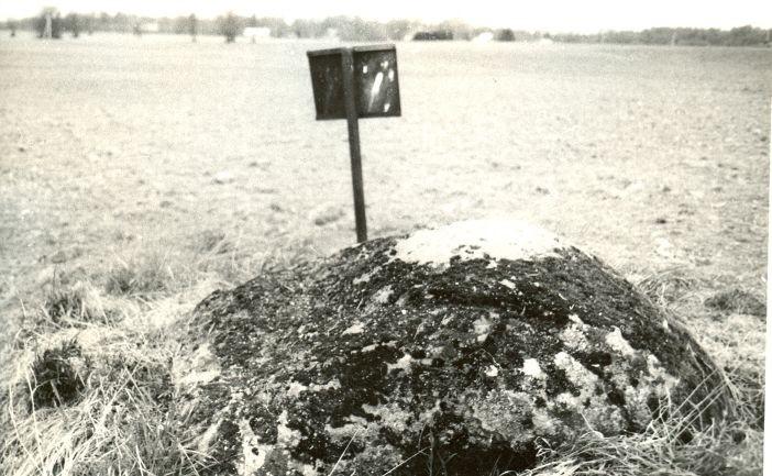 Kultusekivi - idast. Foto: E. Väljal, 20.05.1991.