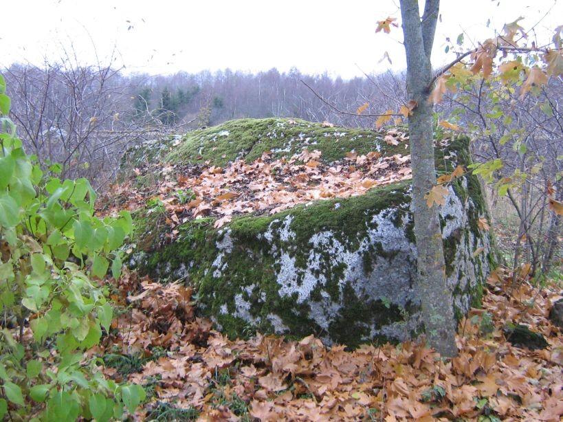 Autor Ulla Kadakas  Kuupäev  26.10.2007