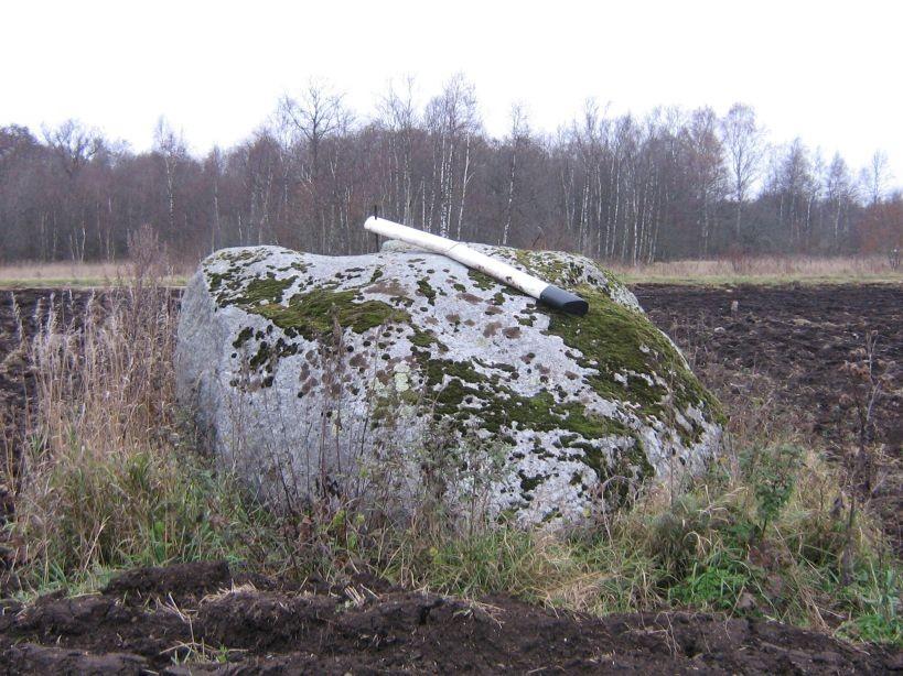 vaade lõunast.  Autor Ulla Kadakas  Kuupäev  26.10.2007