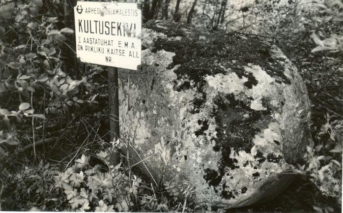 Kultusekivi - lõunast. Foto: E. Väljal, 20.05.1991.