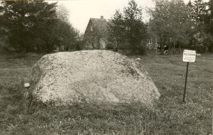 Kultusekivi - edelast. Foto: E. Väljal, 27.05.1991.