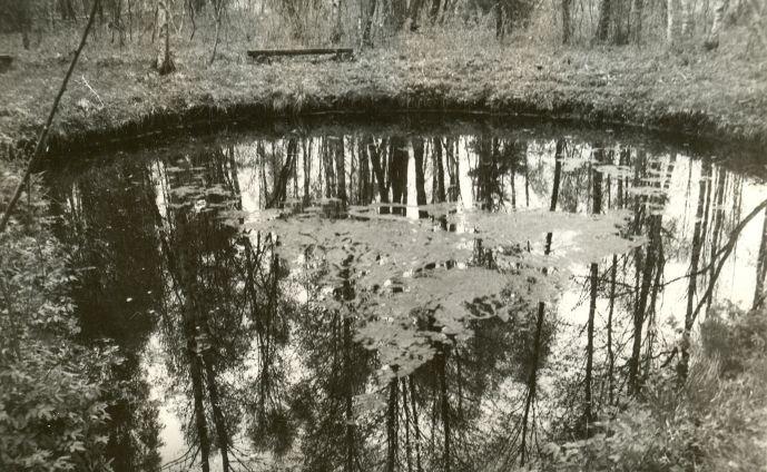 Ohvriallikas - põhjast. Foto: E. Väljal, 20.05.1991.