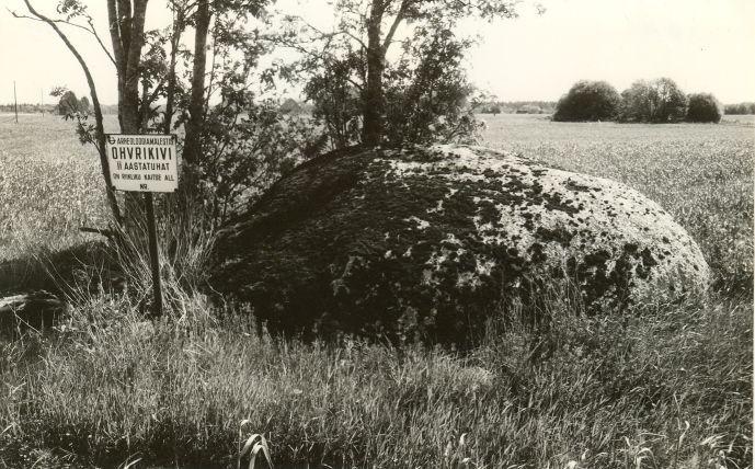 Kultusekivi - edelast. Foto: E. Väljal, 03.06.1991.