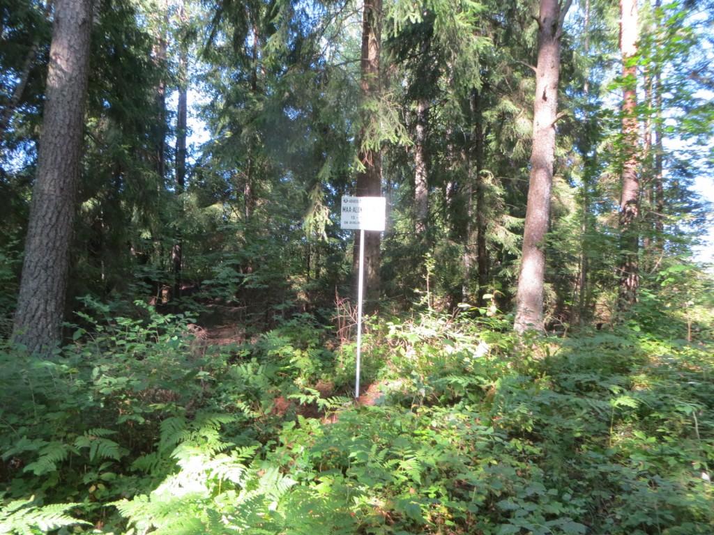 Kalmistu reg nr 13136. Foto: Ingmar Noorlaid, 29.08.2013.