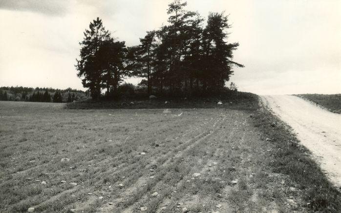 Hukkamis- ja matusepaik - idast. Foto: E. Väljal, 03.06.1991.