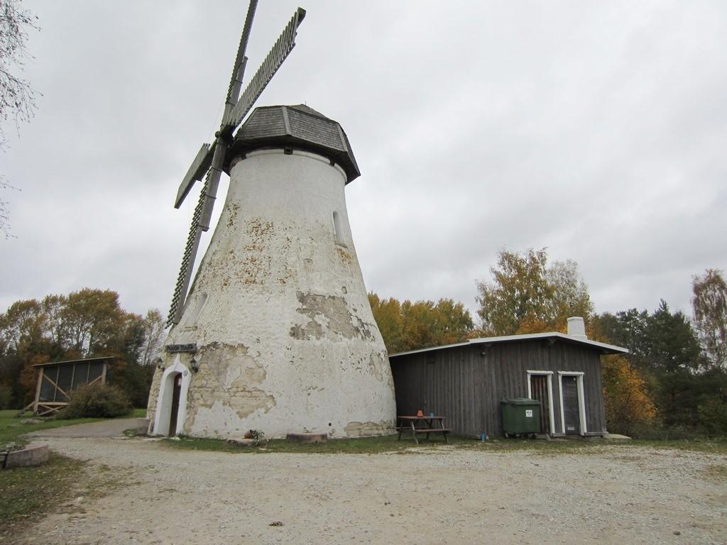 15710 Muuga mõisa tuuleveski , Anne Kaldam 07.10.2013
