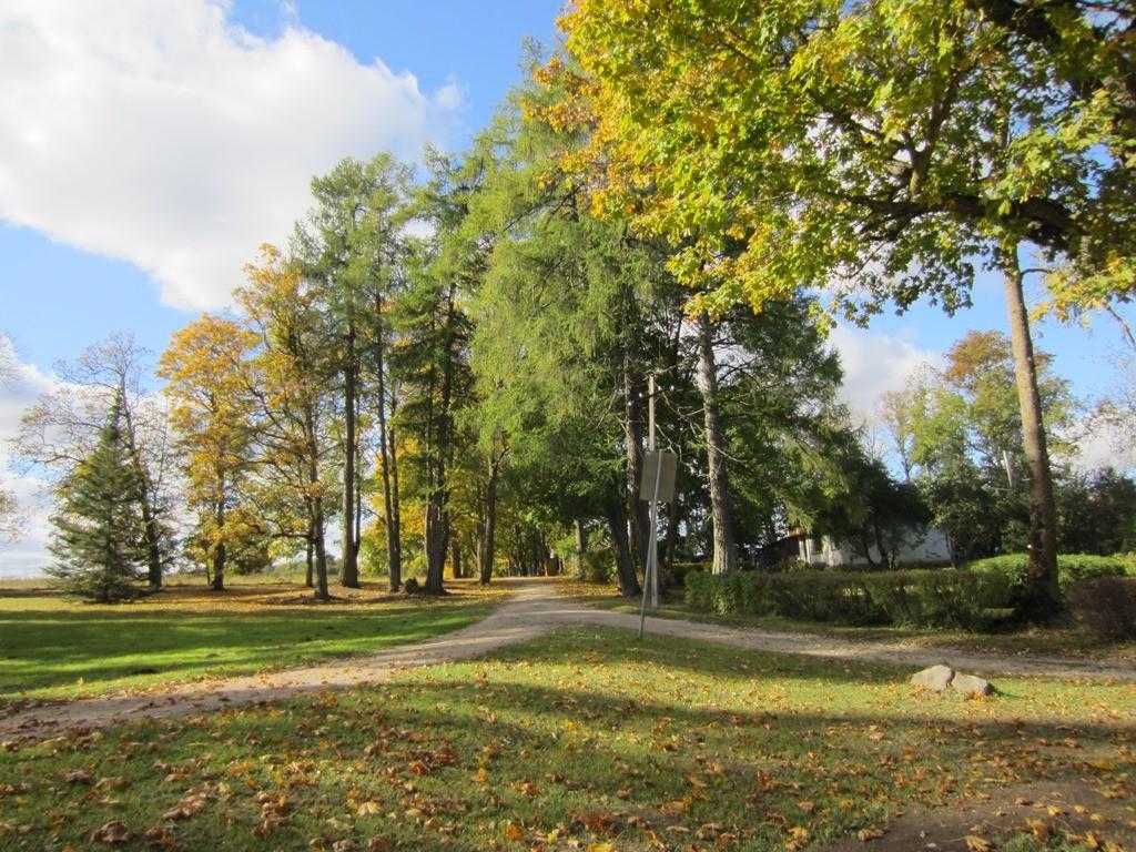 15671 Neeruti mõisa allee, vaade kagust, peahoone eest. foto: 03.10.2013 Anne Kaldam
