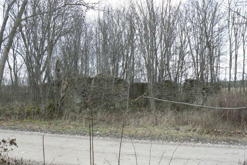 Suuremõisa mõisa kõrtsi varemed  Autor M.Mõniste  Kuupäev  19.11.2007