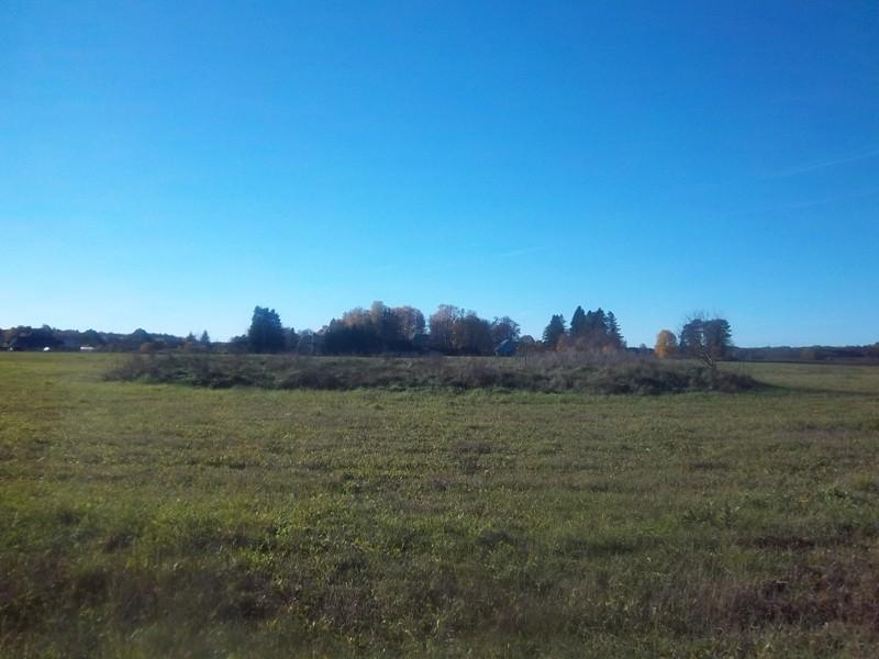Kivikalmete reg nr 12025 ja reg nr 12024 vaade Pihali-Adila-Rabivere teelt (idast). Foto: K. Klandorf, 14.10.2013.
